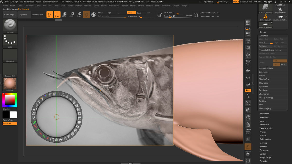 Pixologic - ZBrush Blog on Feedspot - Rss Feed