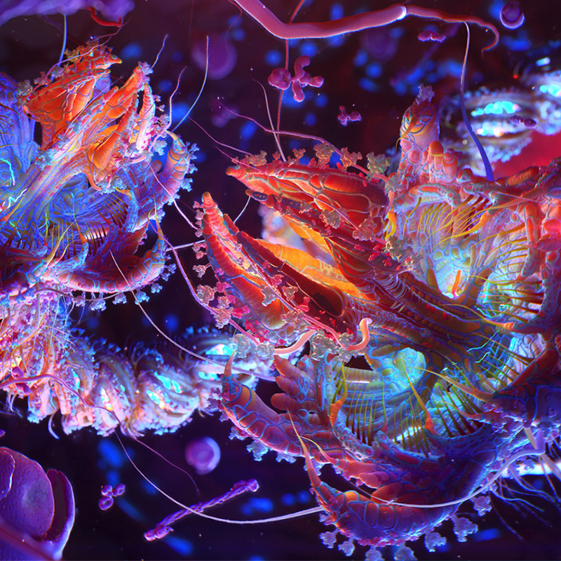 Biomedical Visualization Taken to New Heights by Newt Studios