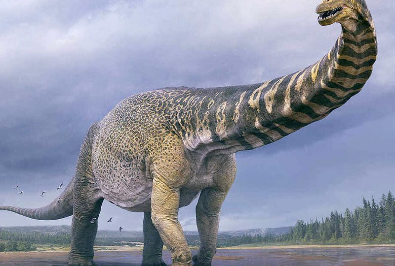Australia's Largest Known Dinosaur Digitally Recreated, 3D Printed Full Scale