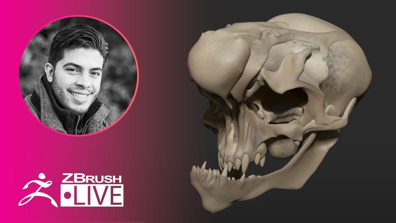 ZBrush Guides: 3D Model a Creature Skull #withme! – Pablo Muñoz Gómez – Part 3