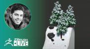 ZBrush Guides: 3D Model Christmas Trees #withme ! – Pablo Muñoz Gómez – ZBrush 2021